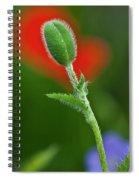 Red Poppy Bud Spiral Notebook