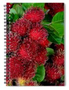 Red Rambutan And Green Leaves Spiral Notebook