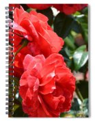 Red Red Roses Spiral Notebook