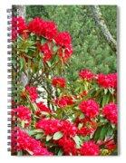 Red Rhododendron Garden Art Prints Rhodies Landscape Baslee Troutman Spiral Notebook