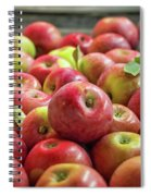 Red Ripe Apples Spiral Notebook