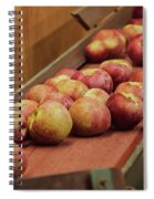 Red Ripe Macintosh Apples Spiral Notebook