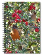 Red Robin And Cedar Waxwing 1 Spiral Notebook