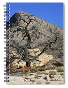 Red Rock Canyon Nv 1 Spiral Notebook