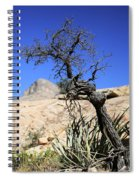 Red Rock Canyon Nv 10 Spiral Notebook