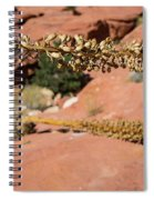 Red Rock Canyon Nv 11 Spiral Notebook