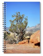 Red Rock Canyon Nv 3 Spiral Notebook