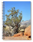 Red Rock Canyon Nv 4 Spiral Notebook