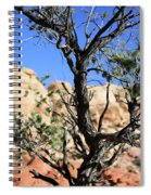 Red Rock Canyon Nv 6 Spiral Notebook