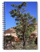 Red Rock Canyon Nv 9 Spiral Notebook