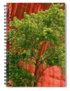 Red Rock Green Tree Spiral Notebook