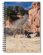 Red Rock Riders Spiral Notebook