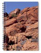 Red Rock Texture Spiral Notebook