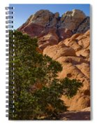Red Rock Textures Spiral Notebook
