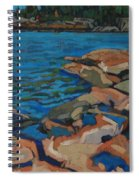 Red Rocks And Pooled Water Spiral Notebook