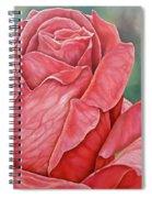Red Rose 93 Spiral Notebook