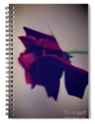 Red Rose Abstract 1 Spiral Notebook