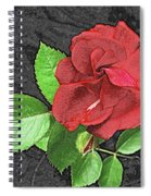 Red Rose For My Lady Spiral Notebook