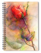 Red Rose From The Past Spiral Notebook