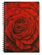 Red Rose II Spiral Notebook