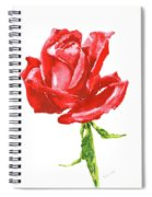 Red Rose Watercolor Painting Spiral Notebook