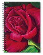 Red Rose Spiral Notebook