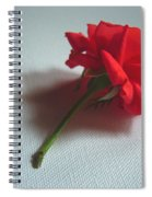 Red Rose Plucked Spiral Notebook