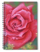 Red Rose With Yellow Lady's Mantle Spiral Notebook