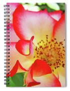 Red Roses White Yellow Rose Flower Floral Art Print Baslee Troutman Spiral Notebook