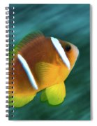 Red Sea Clownfish  Spiral Notebook