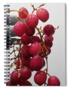 Red Seedless Grape Cluster Spiral Notebook