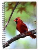 Red Sentry Spiral Notebook