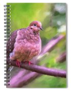 Red Shoes Spiral Notebook