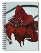 Red Silk Cotton Flower Spiral Notebook