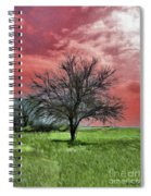 Red Sky Spiral Notebook