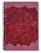 Red Spiral Spiral Notebook