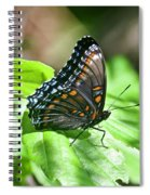 Red-spotted Purple 4172 Spiral Notebook