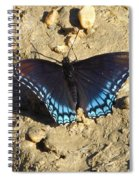 Red Spotted Purple Astyanax Spiral Notebook