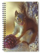 Red Squirrel With Pine Cone Spiral Notebook