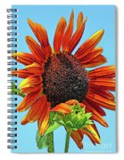 Red Sunflowers-adult And Child Spiral Notebook