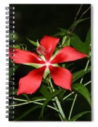 Red Swamp Hibiscus Spiral Notebook