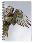 Red Tail Takeoff Spiral Notebook