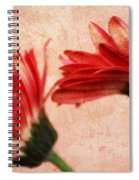 Red Texture 2 Spiral Notebook
