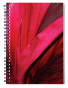 Red Ti Leaf Plant - Hawaii Spiral Notebook