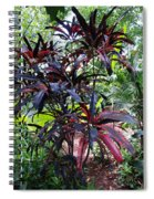 Red Trees Spiral Notebook