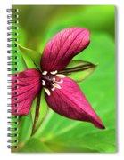 Red Trillium Wildflower Spiral Notebook