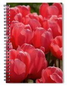 Red Tulip Buds Crest The Earth Spiral Notebook