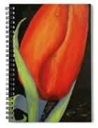 Red Tulip Spiral Notebook