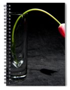 Red Tulip On Black Spiral Notebook