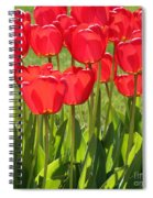 Red Tulips Square Spiral Notebook